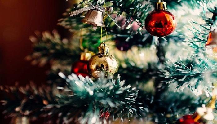 El árbol de navidad ¿cuál es su historia?